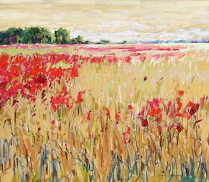 <b>Corn and Poppies XVII</b><br/>20 x 18<br/><br/>